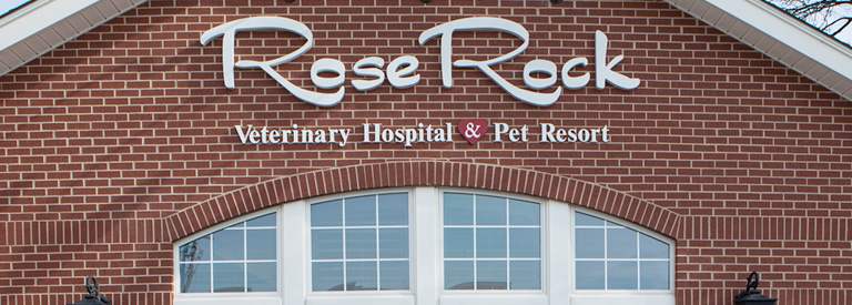 norman, ok veterinary hospital